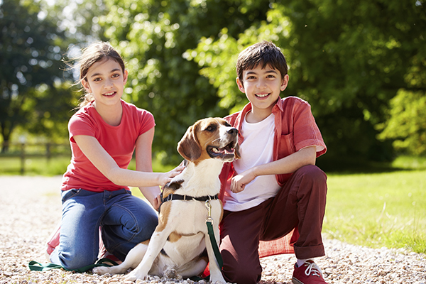 Pet sitting s another way that kids can earn extra money.