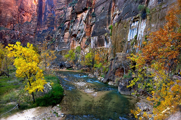 Zion National Park is a rainbow of colors.