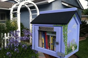 Get to Know the Little Free Library