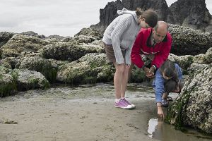 Tips for Tidepooling in San Diego