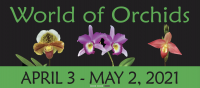 World of Orchids