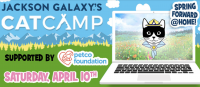 Jackson Galaxy's Cat Camp: Spring Forward @Home