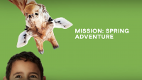 Mission: Spring Adventure at the San Diego Zoo