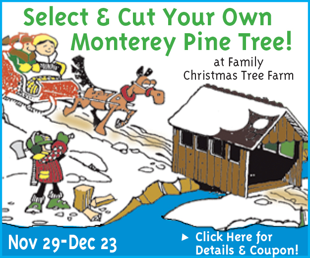 Family Christmas Tree Farm