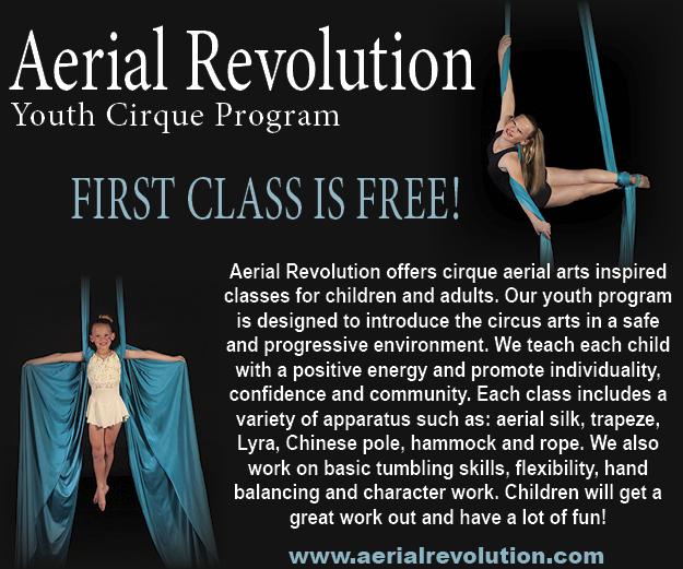 Aerial Revolution