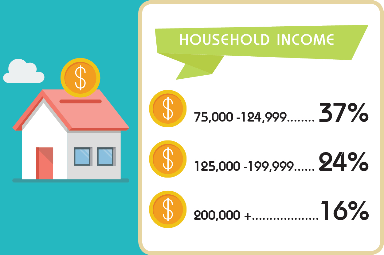 infografic demographic Income
