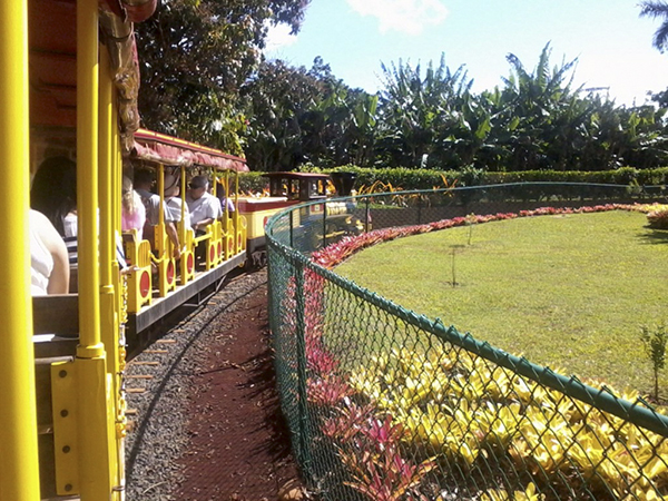 The Dole Plantation in Hawaii