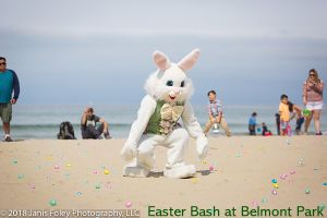 Easter 2019 - 30+ Egg Hunts & Happenings in San Diego