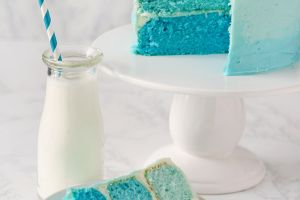 The Big Reveal! 19 Gender Reveal Ideas to Wow Family and Friends