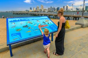 Ask the Locals: Hidden Spots in San Diego Families Should Find